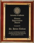Rosewood Piano Finish Recognition Plaque Sales Awards