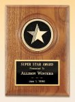 American Walnut Star Plaque Sales Awards